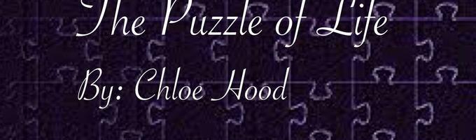 The Puzzle Of Life ↕Calum Hood AU↕